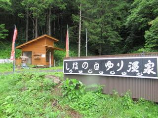sirayuriIMG_3900.JPG